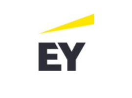Ernst & Young LLC logo