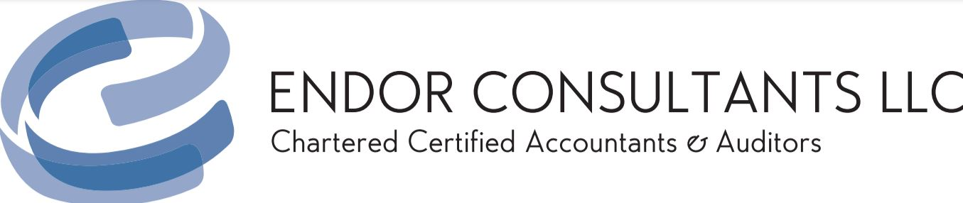 Endor Consultants logo